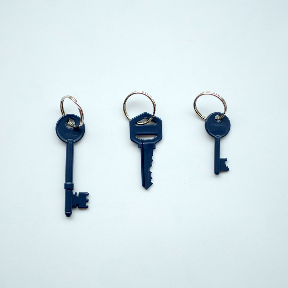 NBN Key Rings